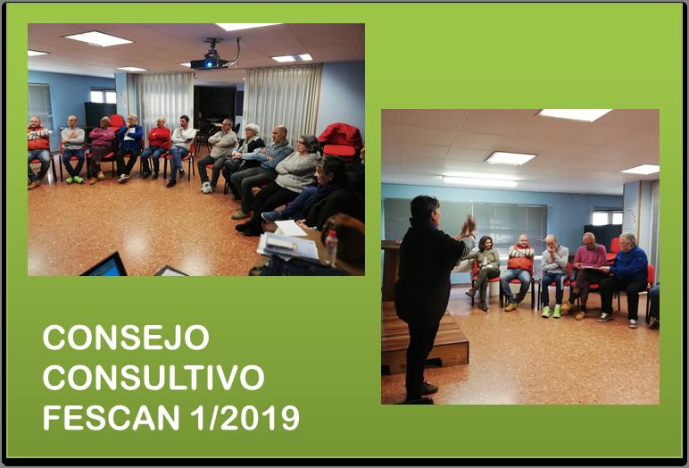 PRIMER CONSEJO CONSULTIVO DE FESCAN EN 2019